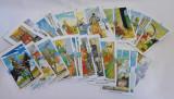 Lot 5 jocuri de carti Tarot incomplete, carti de ghicit, ezoterism, 115 bucati