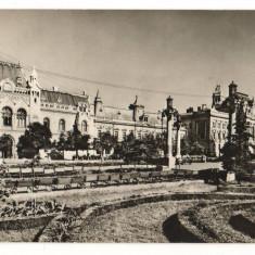 CPI (B9334) CARTE POSTALA - ORADEA. PIATA VICTORIEI, 1967 - Carte Postala Crisana dupa 1918, Circulata, Fotografie