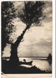 CPI (B9344) CARTE POSTALA - PEISAJ DIN DELTA DUNARII, RPR, 1959, Circulata, Fotografie