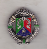 bnk ins Franta - Insigna militara - Legiunea straina - 1er REC