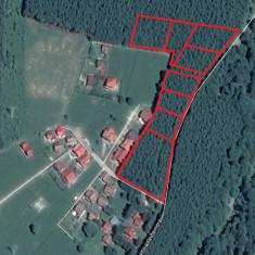 Teren 10.000 mp, Soseaua Zamora, Sinaia, Judet Prahova - Teren de vanzare, Teren intravilan
