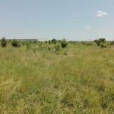 Teren 2.500 mp, Chiajna, Judet Ilfov - Teren de vanzare, Teren intravilan