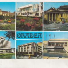 Bnk cp Oradea - Vedere - necirculata - Carte Postala Crisana dupa 1918, Printata