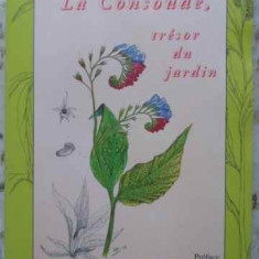 La Consaude, Tresor Du Jardin (tataneasa, Comoara Din Gradina - Bernard Bertrand, 407491 - Carti Agronomie