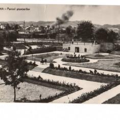 CPI (B9406) CARTE POSTALA - CAMPINA. PARCUL PIONIERILOR, RPR