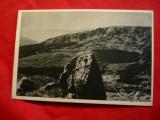Ilustrata - Retezat - Lac , cca. 1950, Necirculata, Printata