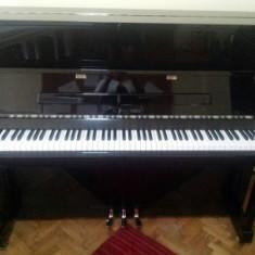 Pianina G Steinberg 123