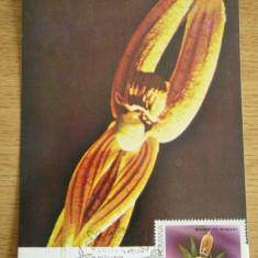 MXM - FLORA - EXPOZITIA FILATELICA NATURA NAPOCEANA - CLUJ NAPOCA 1990, Romania de la 1950