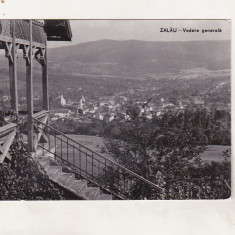 Bnk cp Zalau - Vedere generala - circulata, Printata