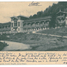 162 - Bacau, SLANIC MOLDOVA - old postcard - used - 1903 - Carte Postala Moldova pana la 1904, Circulata, Printata