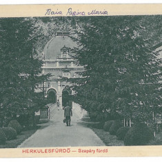 417 - Caras-Severin, BAILE HERCULANE - old postcard - unused - Carte Postala Banat 1904-1918, Necirculata, Printata