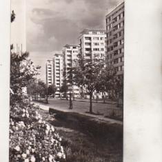 Bnk cp Bucuresti - Pe b-dul Dinicu Golescu - uzata - Carte Postala Muntenia dupa 1918, Circulata, Printata