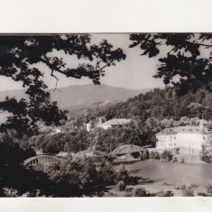 Bnk cp Calimanesti - Pod peste Olt - uzata - Carte Postala Oltenia dupa 1918, Circulata, Printata
