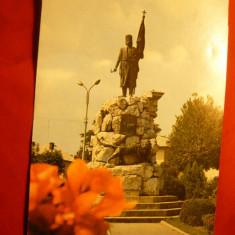 Ilustrata Targu Jiu - Statuia lui Tudor Vladimirescu - Carte Postala Oltenia dupa 1918, Necirculata, Printata
