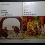 Gerhard W. Menzel - Pieter Bruegel nazdravanul