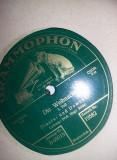 Mapa pentru depozitare si pastrare a discurilor vinil vechi Gramofon,viniluri,TG