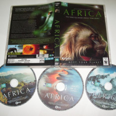 B.B.C. Africa 2013 - Serial TV DVD, Altele, Romana