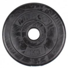 Disc gantera 31mm 20 kg, Discuri greutati
