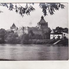 Bnk cp Arad - Pe malul Muresului - circulata - Carte Postala Crisana dupa 1918, Printata