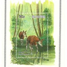 Zaire 1984 - okapi, colita neuzata