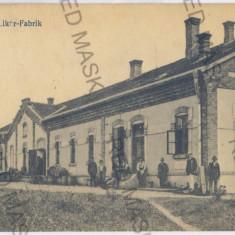 2700 - Bukowina, Suceava, RADAUTZ, Liqueur factory - old postcard - used - Carte Postala Bucovina 1904-1918, Circulata, Printata