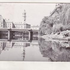 Bnk cp Oradea - Pod peste Cris - circulata - Carte Postala Crisana dupa 1918, Printata