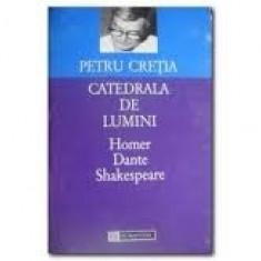 Petru cretia catedrala de lumini - Studiu literar