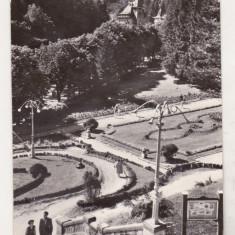 Bnk cp Slanic Moldova - Dimineata in parc - circulata - Carte Postala Moldova dupa 1918, Printata