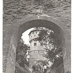 Sibiu 1964 - Turnul olarilor