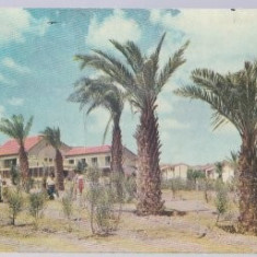Elath 1958 - Shelomi hotel