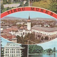 Targu Mures 1974 - mozaic
