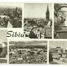 Sibiu 1975 - mozaic