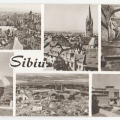 Sibiu 1966 - mozaic