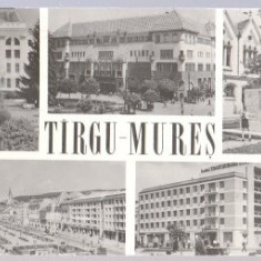 Targu Mures 1964 - mozaic