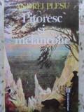 Pitoresc Si Melancolie - Andrei Plesu ,407965