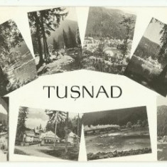 Tusnad 1959 - mozaic