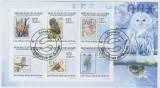 Guinea 2009 - bufnita, bloc stampilat