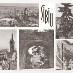 Sibiu 1964 - mozaic