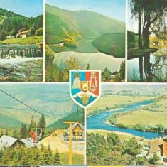 Judetul Sibiu 1981 - mozaic