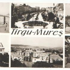 Targu Mures 1970 - mozaic