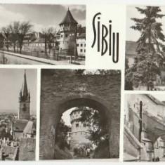 Sibiu 1971 - mozaic