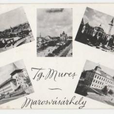 Targu Mures 1963 - mozaic