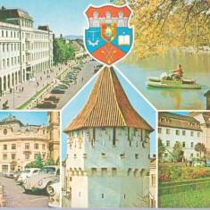 Sibiu 1978 - mozaic