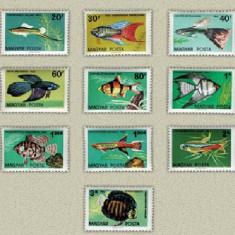 Ungaria 1962 - pesti de acvariu, serie neuzata