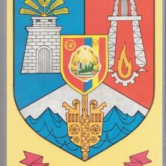 Stema judetului Sibiu