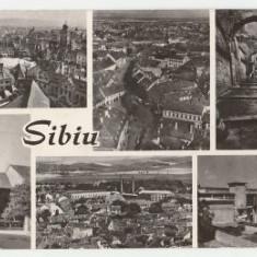 Sibiu 1965 - mozaic
