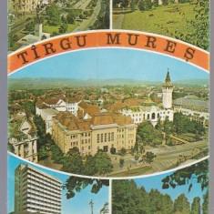 Targu Mures 1976 - mozaic