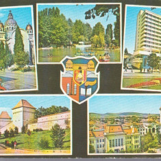 Targu Mures 1977 - mozaic