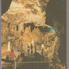 Chiscau(Bihor) 1982 - Pestera Ursilor