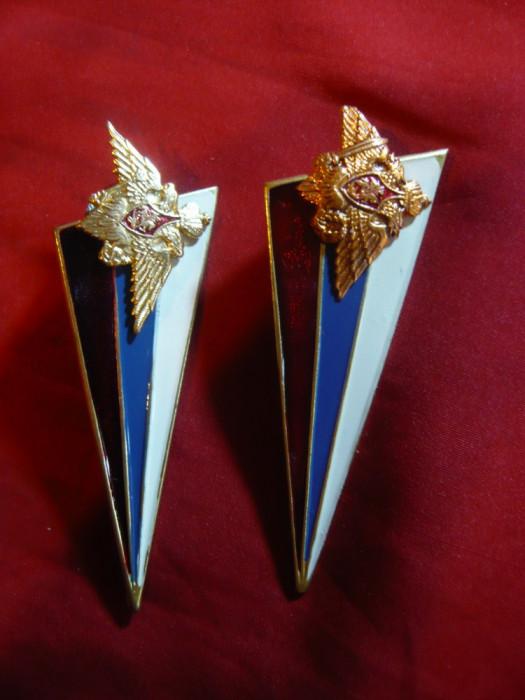 2 Insigne de Bereta - Armata Rusa ,diferenta culoare, metal si email , L=8 cm